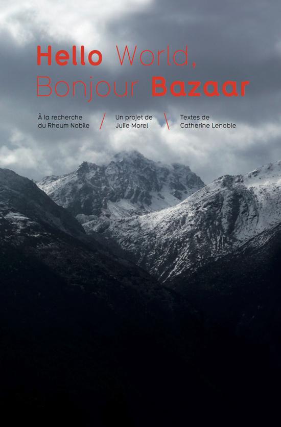 Hello World, Bonjour Bazaar-visual